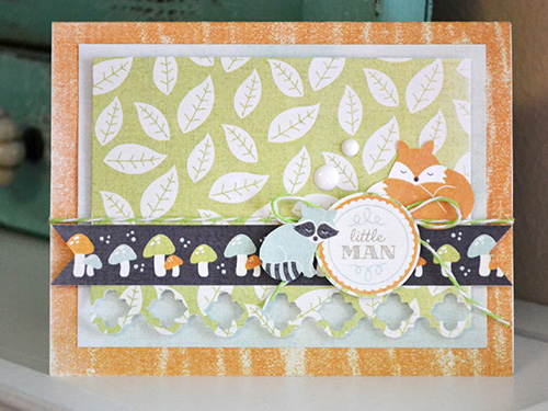 aly_baby animals 12x12 card