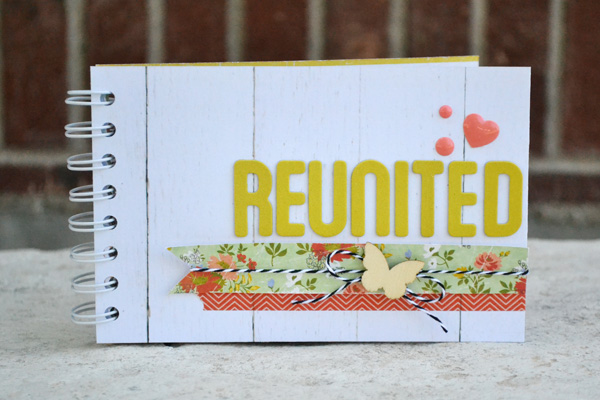 We R Family Reunion Cinch Book by Aly Dosdall