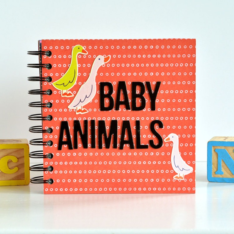 Baby Animals Board Book by Amanda Coleman