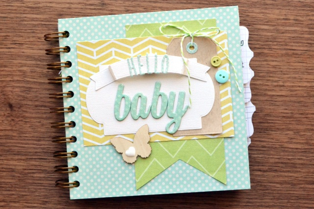 cinch-baby-book