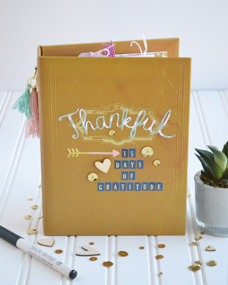 15-days-of-gratitude-by-aly-dosdall-1