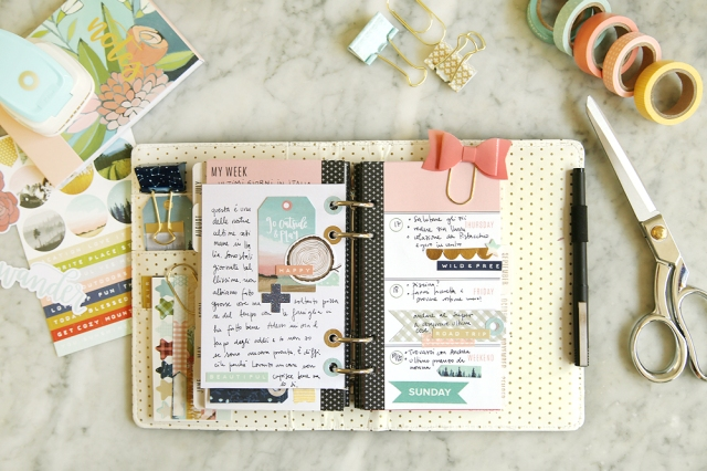 Hole Reinforcer Punch Planner Spread by Eva Pizarro for We R Memory Keepers