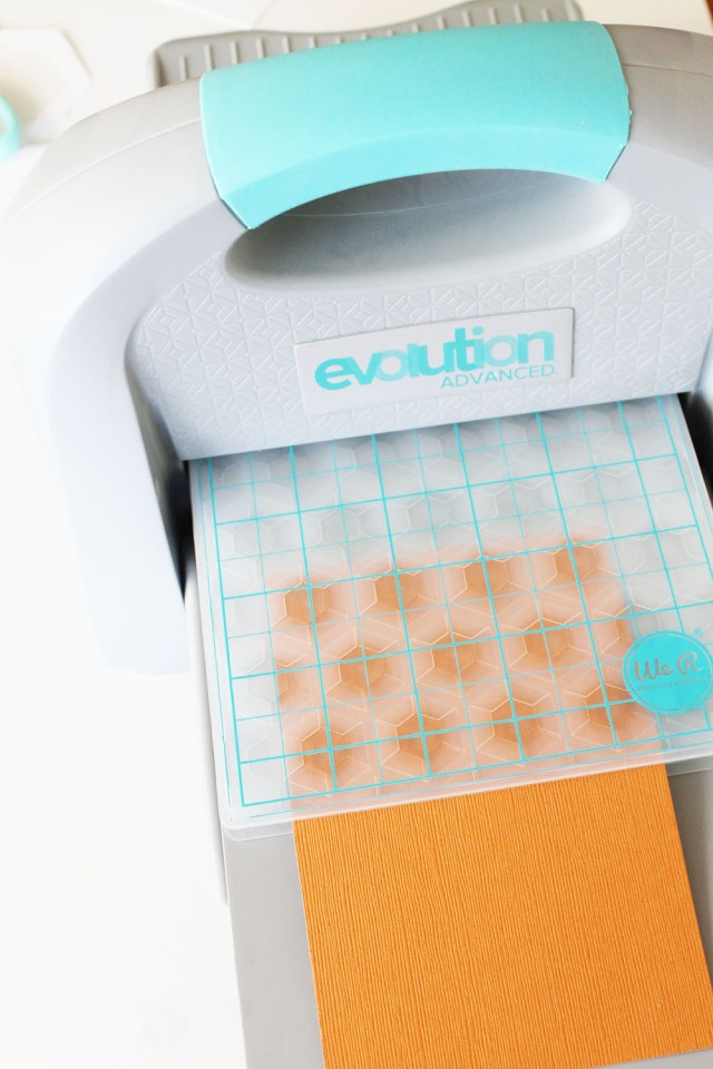 Evolution Advanced and Next Level Embossing Folders by We R Memory Keepers